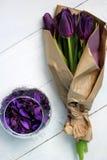 Tulpenpurple: gelukwensen, 8 Maart Internationale Vrouwen` s Dag, 14 de Dag van Februari Valentine ` s, vakantie Stock Foto's