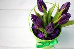 Tulpenpurple: gelukwensen, 8 Maart Internationale Vrouwen` s Dag, 14 de Dag van Februari Valentine ` s, vakantie Royalty-vrije Stock Foto's