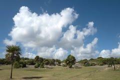 Tulum,墨西哥玛雅废墟  库存图片