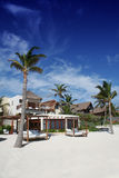 tulum του Μεξικού παραλιών κόλ Στοκ εικόνα με δικαίωμα ελεύθερης χρήσης