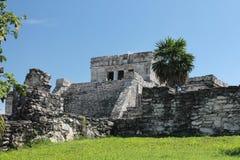 Tulum Мексика Стоковые Фото