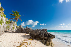 tulum Мексики пляжа Стоковые Изображения RF