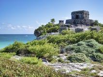 Майяские руины Tulum - Мексики стоковое фото rf