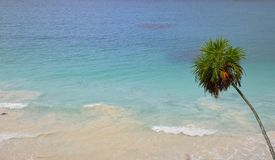 Tulum Lizenzfreies Stockfoto