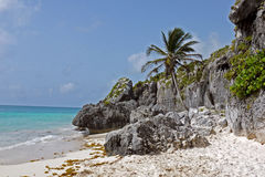 Tulum Beach, MEXICO. Royalty Free Stock Photography