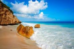 Tulum beach palm tree in Riviera Maya. Tulum turquoise beach in Riviera Maya at Mayan royalty free stock photos
