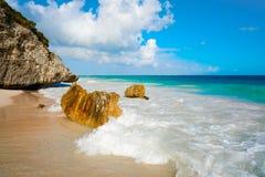 Tulum beach palm tree in Riviera Maya. Tulum turquoise beach in Riviera Maya at Mayan royalty free stock images