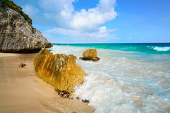 Tulum beach palm tree in Riviera Maya. Tulum turquoise beach in Riviera Maya at Mayan royalty free stock photography