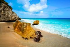 Tulum beach palm tree in Riviera Maya. Tulum turquoise beach in Riviera Maya at Mayan royalty free stock image