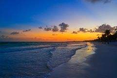 Tulum beach sunset palm tree Riviera Maya. Tulum beach sunset palm tree in Riviera Maya at Mayan Mexico stock image
