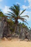 Tulum Beach Yucatan Mexico Stock Photography