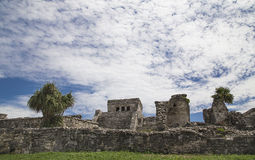 Tulum - El Castillo. The side which is turned to the walled city stock image