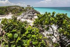 Tulum fördärvar tempelet Yucatan Mexico Arkivbild