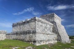 Tulum. Maya ruins in tulum in summer Royalty Free Stock Photo