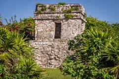 Tulum Maya Ruins, Yucatan stockfotos
