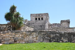 Tulum Mayan Ruins. In Mexico Stock Photos