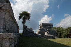 Tulum Mayan Ruins - Castillo / Temple of the Diving God in Tulum Mexico. MEX Stock Image