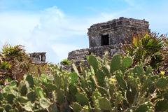 Tulum mayan ruins at yucatan peninsula Royalty Free Stock Photo