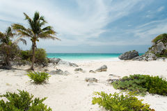 Tulum in Mexico. On the beach in Tulum in Mexico Royalty Free Stock Image
