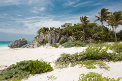 Tulum in Mexico. On the beach in Tulum in Mexico Stock Photography
