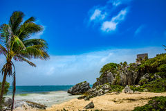 Tulum Mexico Beach paradise. Tropical beach paradise in Tulum Mexico  with the ancient Myan ruins visible in the background Royalty Free Stock Photo