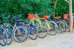 TULUM MEXICO - JANUARI 10, 2018: Den utomhus- sikten av något cyklar parkerat i rad i skriva in av Mayan fördärvar av Tulum in fotografering för bildbyråer