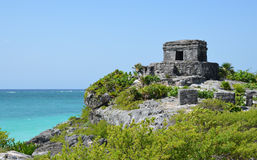 Tulum. In Mexico Maya Ruine Stock Photography