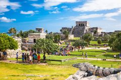 Iguana on the ruins of Tulum in Mexico. royalty free stock photo
