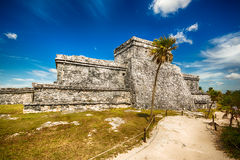 Tulum mexico Royalty Free Stock Images