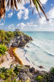 Tulum, Mexico. Turtle beach. Royalty Free Stock Photos