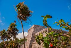 Tulum, Mexico, Yucatan, Riviera Maya: The ruins of the ancient Mayan city archeological site in Tulum.  stock photo