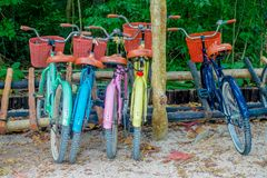 TULUM, MEXIQUE - 10 JANVIER 2018 : La vue extérieure de cinq vélos s'est garée dans une rangée dans le pénétrer dans des ruines m Photo libre de droits