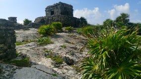 Tulum nationalpark - Mexico royaltyfri fotografi