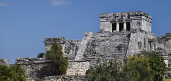 Tulum pyramid. Ancient temple pyramid of Tulum with steps, Mexico. Mayan ruins royalty free stock photos
