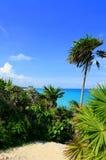Tulum, Riviera Maya, Mexico. The magic Caribbean coast near Cancun, Mexico royalty free stock photography