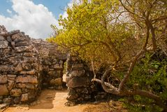 Tulum, Riviera Maya, Yucatan, Mexico: The entrance to the temple. Ruins of the destroyed ancient Mayan city.  royalty free stock image