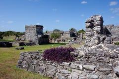 Tulum Ruinen Stockbilder