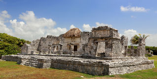 Tulum ruins. Tulum mayan ruins in mexico royalty free stock photo