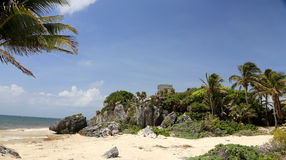 Tulum ruins. Tulum mayan ruins in mexico royalty free stock images