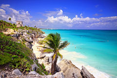 Tulum ruins over beach with palm Royalty Free Stock Images