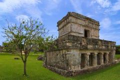 Tulum tempel av målningarna eller frescoesna Arkivfoton