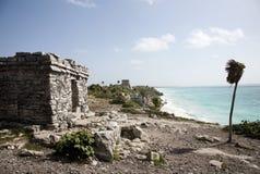 Руины Tulum, Tulum Мексика. Стоковые Фотографии RF