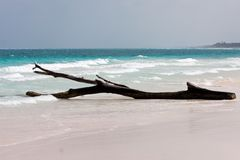 Tulum white beach in mexico Royalty Free Stock Photo