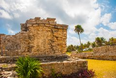 Tulum, Yucatan, Mexico: Archeological ruins, built by the Mayas. Tulum, Yucatan, Mexico: Archeological ruins built by the Mayas. Ancient city royalty free stock photo