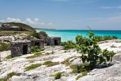 Tulum Yucatan Peninsula Mexico Stock Image