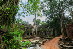 Tum Phrom, Angkor Wat, Cambogia Immagini Stock Libere da Diritti