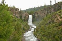 Tumalo Falls. 11 miles west of Bend, Oregon, Tumalo Falls cascades 131 feet from a sheer basalt precipice into the Tumalo Creek Canyon.  The overcast morning of Royalty Free Stock Photo