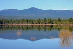 Tumalo Reservoir in May. The foothills of the Cascades reflect in the water at Tumalo Reservoir 9 miles northwest of Bend, Oregon.  Usually dry most of the year Royalty Free Stock Photo