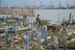 Tumba sumergida como resultado de la erosión costera Imagen de archivo