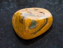 tumbled Leopard Skin Jasper gemstone on dark Royalty Free Stock Images
